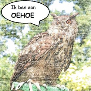 oehoe